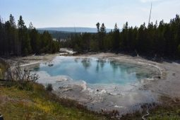 Yellowstone National Park – Four Days Not Enough!